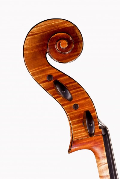 Tête-Cello-SEYRAL-DSF8851